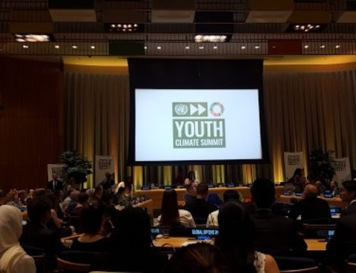 Forestry and Climate Action – IFSA at the Youth Summit