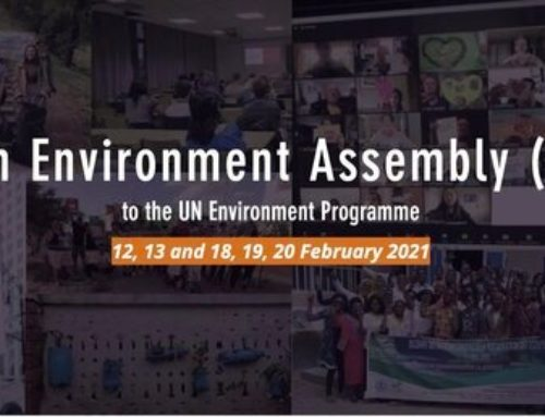 Open Call for Speakers at the Youth Environment Assembly 5.1