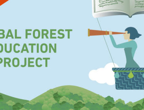 Forest Education Video Campaign