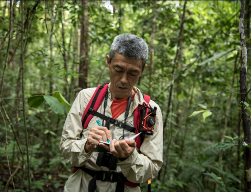 Forest data for climate action-FAO Webinar