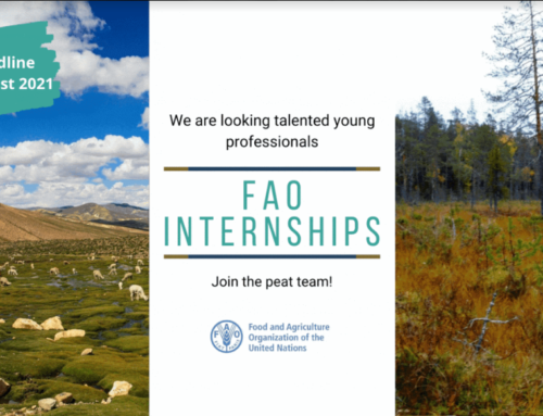 Are you a young talent in the field of peatlands, mangroves, or aquatic & wetland ecosystem restoration?