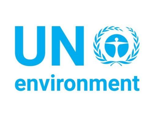 UN Environment's Science Division Remote Internships