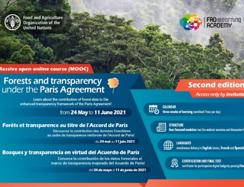 Forests and transparency under the Paris Agreement: the second edition of the massive online open courses