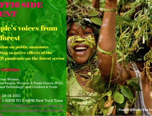 People's voices from the forest – Reflection on public measures mitigating negative effects of the Covid19 pandemic on the forest sector
