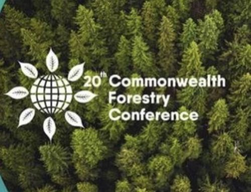 The 20th Commonwealth Forestry Conference