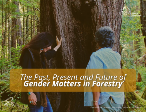 Forests in Women's Hands 2021: The Past, Present and Future of Gender Matters in Forestry