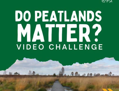 Peatland – Video Challenge